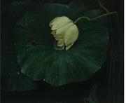 乐山千里马画室油画作品1